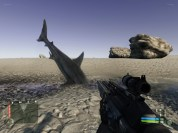 SHARK in DESERT